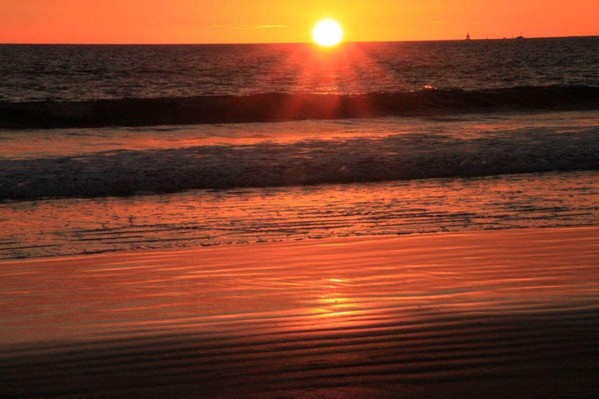 黄金色に輝くコロナドビーチ