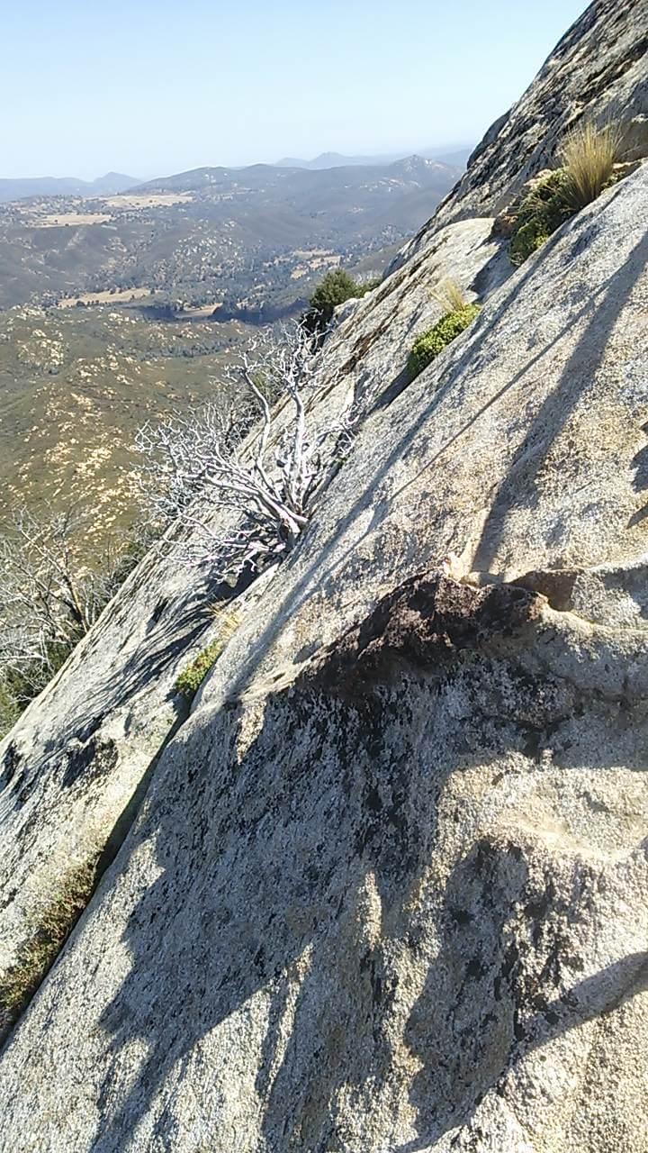 大岩の斜面